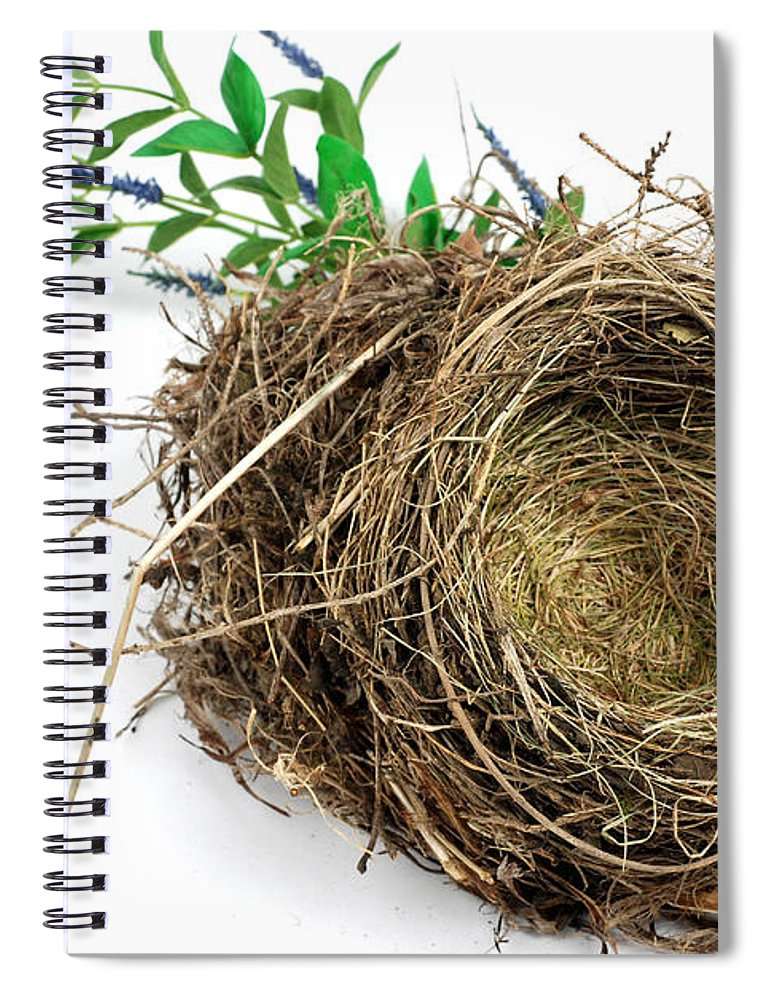 Animal Spiral Notebook featuring the photograph Birds Nest by Photo Researchers, Inc.