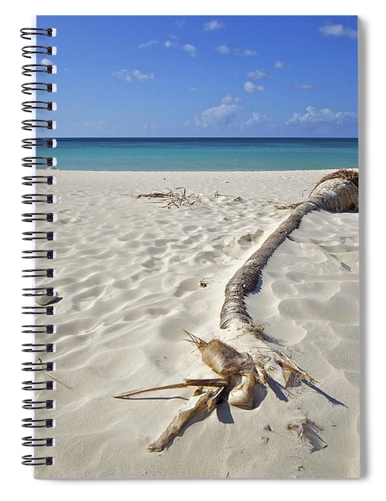 Aruba Spiral Notebook featuring the photograph Fallen Palm Tree On A Caribbean White Sand Beach by David Letts