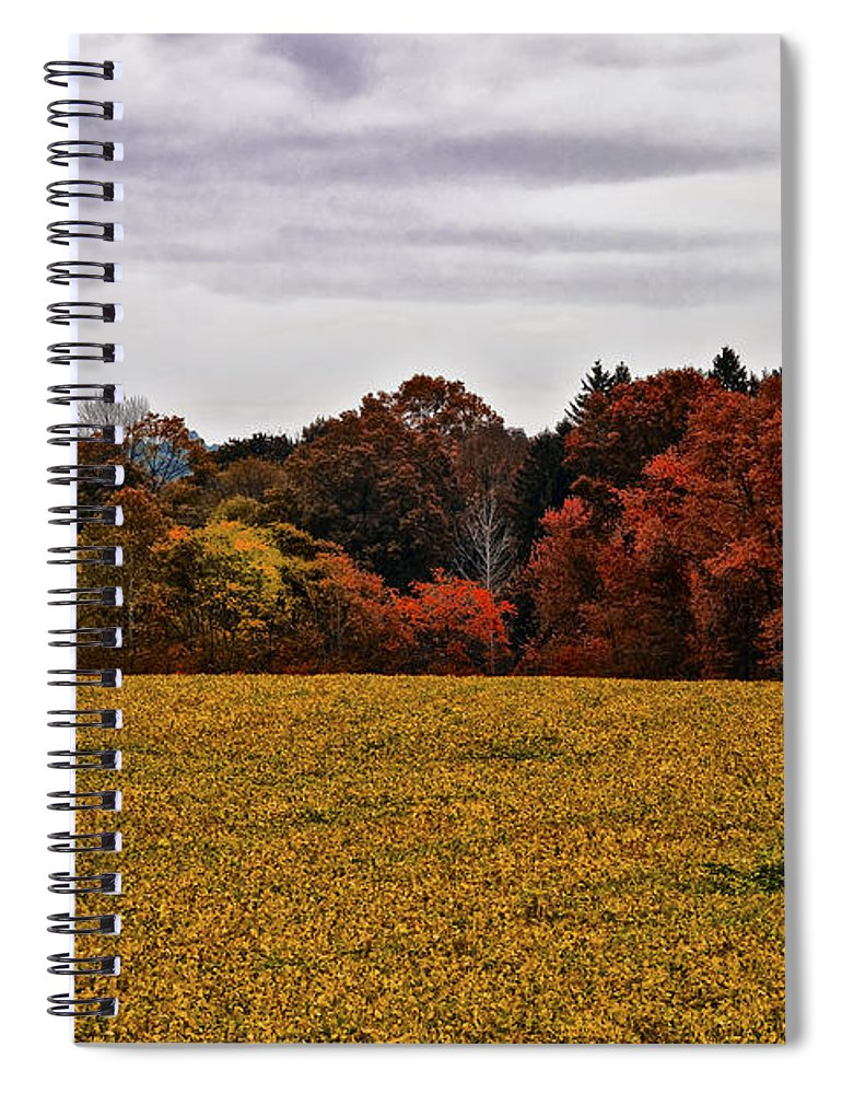 Fields Of Gold Spiral Notebook featuring the photograph Fields Of Gold by Bill Cannon