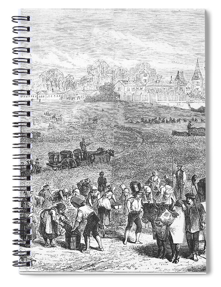 1871 Spiral Notebook featuring the photograph France: Wine Harvest, 1871 by Granger