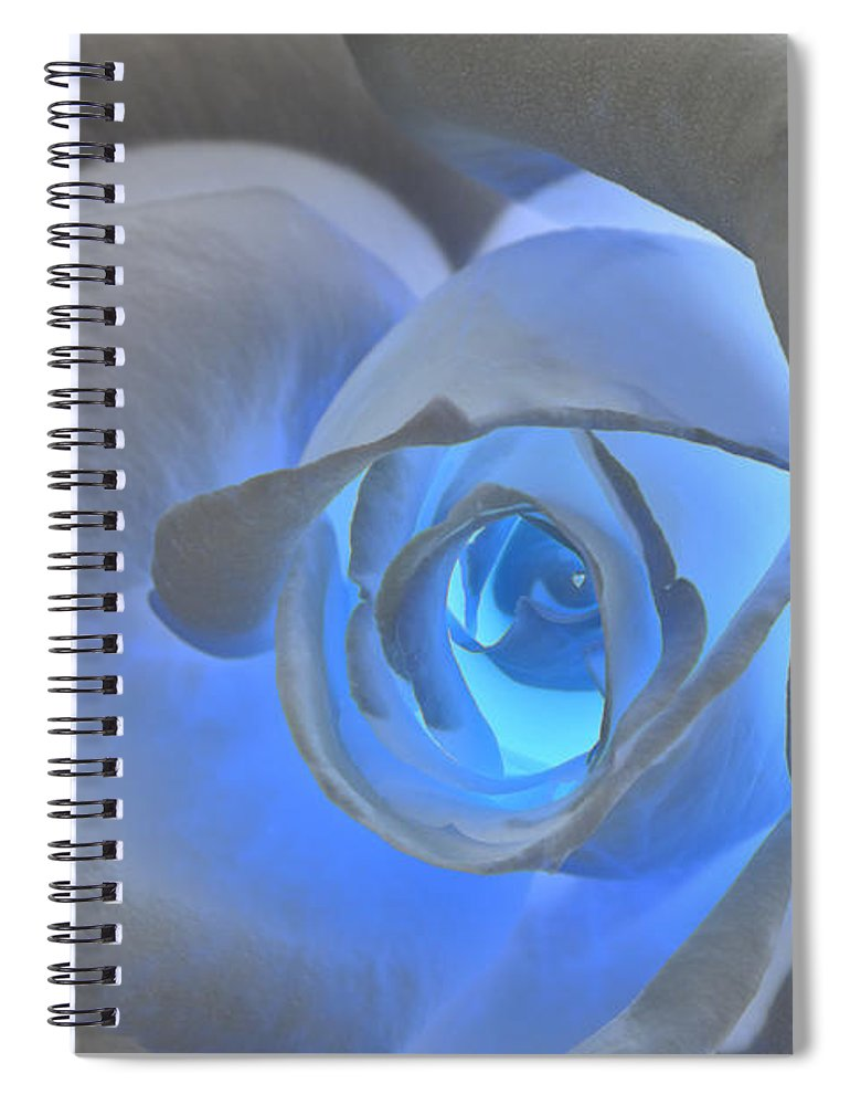 Rose Spiral Notebook featuring the photograph Glowing Blue Rose by Phyllis Denton