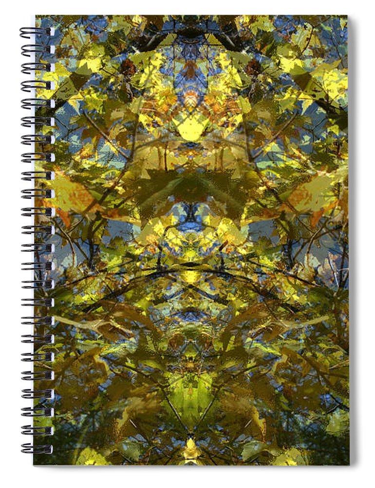 Golden Rorschach Spiral Notebook featuring the photograph Golden Rorschach by Seth Weaver