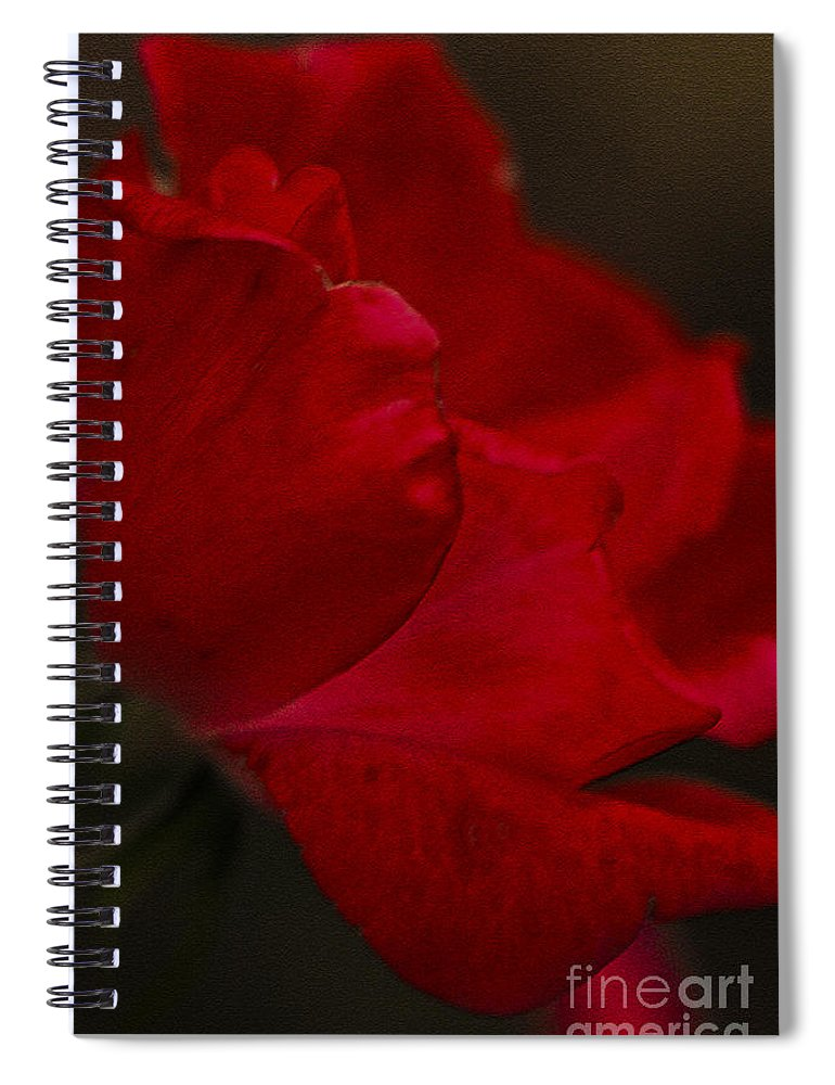 Rose Spiral Notebook featuring the photograph Kissed by Kim Henderson