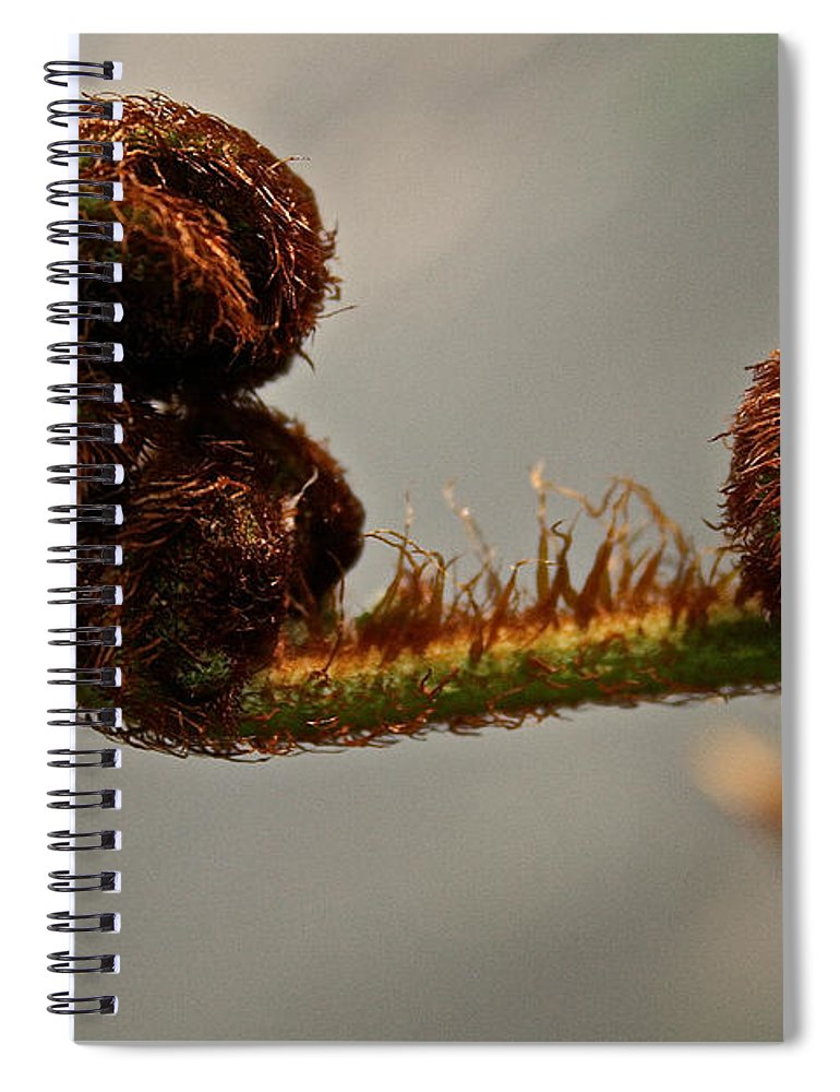 Plant Spiral Notebook featuring the photograph Nature's Red Carpet Unfurling by Susan Herber