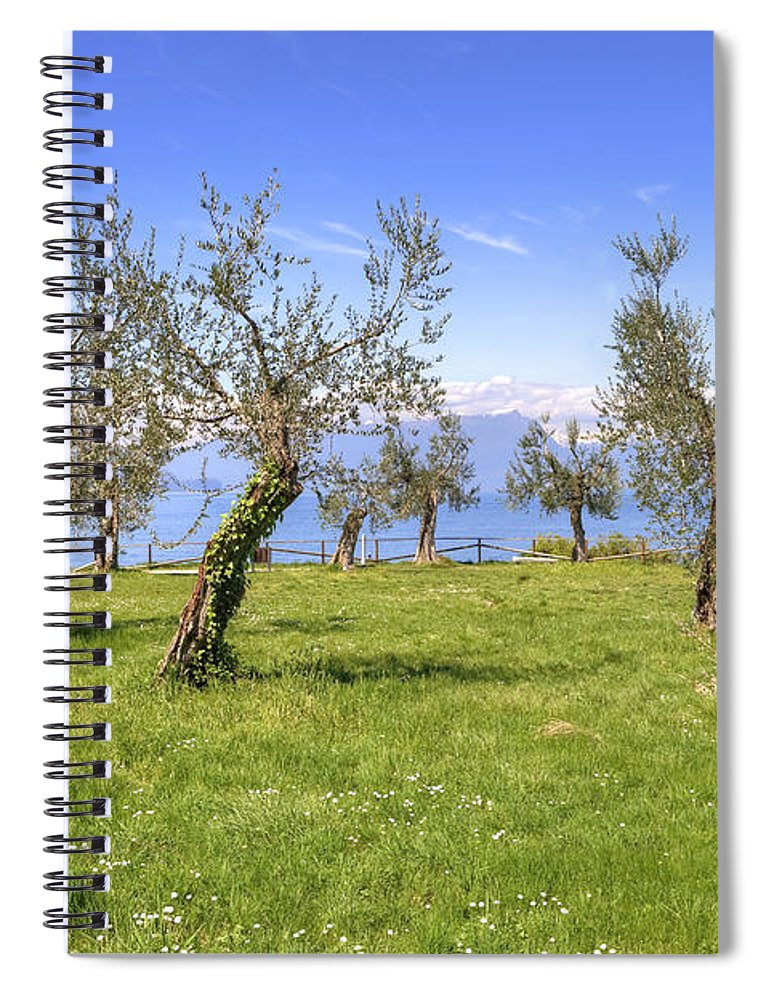 Olive Grove On Lake Gardan Spiral Notebook For Sale By Joana Kruse