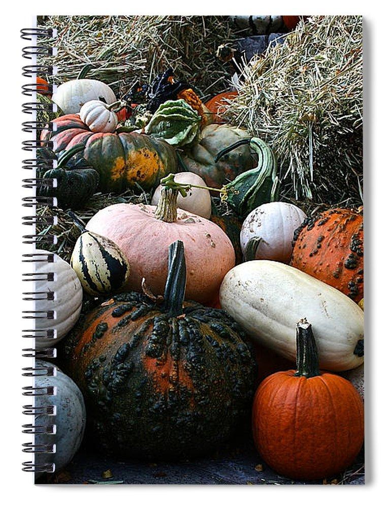 Outdoors Spiral Notebook featuring the photograph Pumpkin Piles by Susan Herber