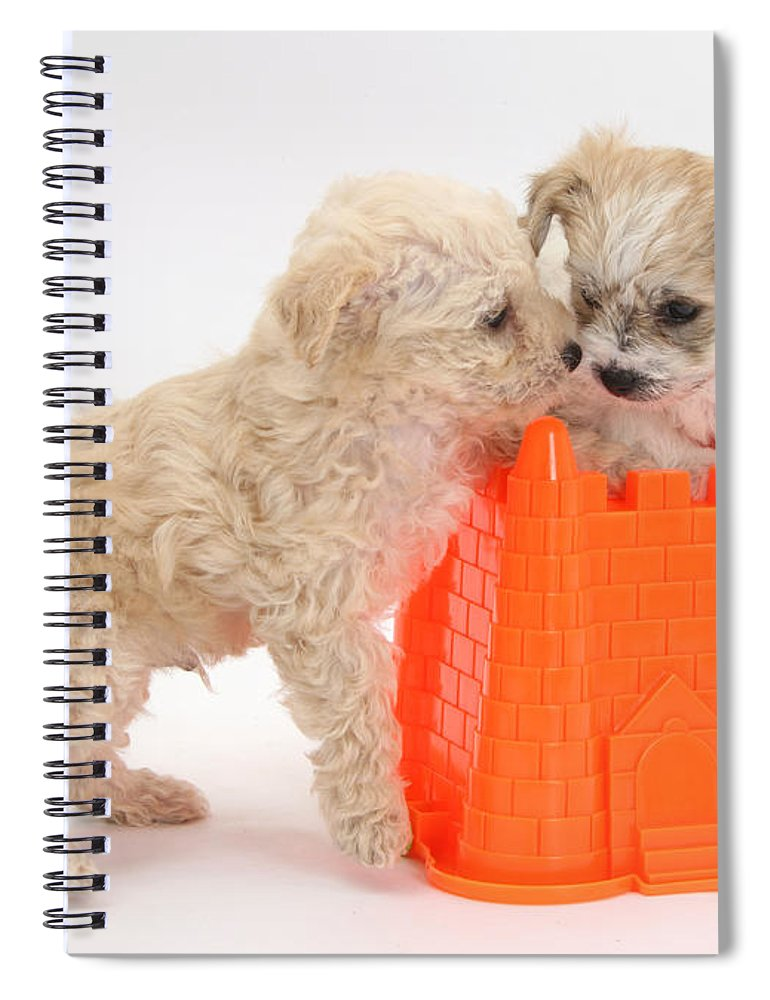 Nature Spiral Notebook featuring the photograph Puppies Playing With Bucket by Mark Taylor