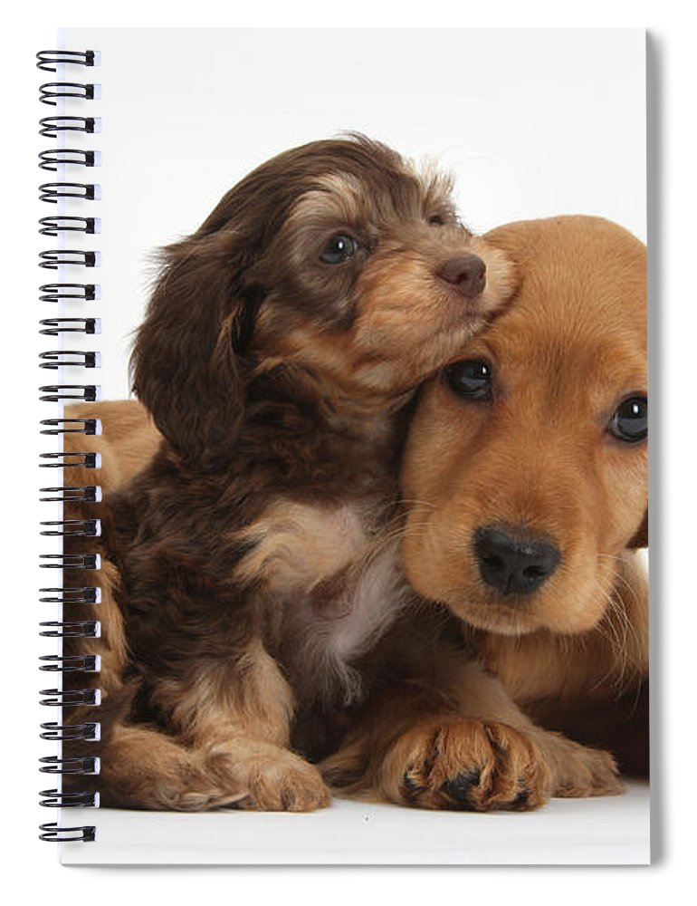 Nature Spiral Notebook featuring the photograph Puppy Love by Mark Taylor