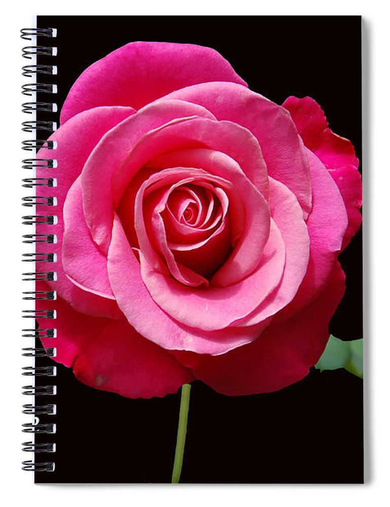 Love Spiral Notebook featuring the photograph The Greatest Gift by Aimee L Maher ALM GALLERY