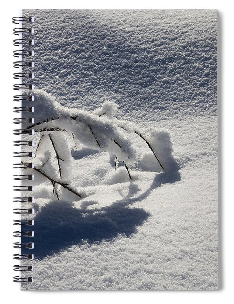 Sapling Spiral Notebook featuring the photograph The Weight of Winter by Mike Dawson
