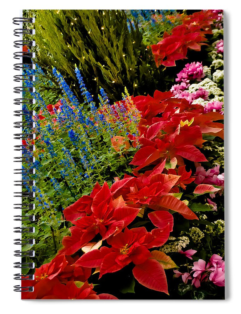 Pointsettia Spiral Notebook featuring the photograph Up All Night by Trish Tritz