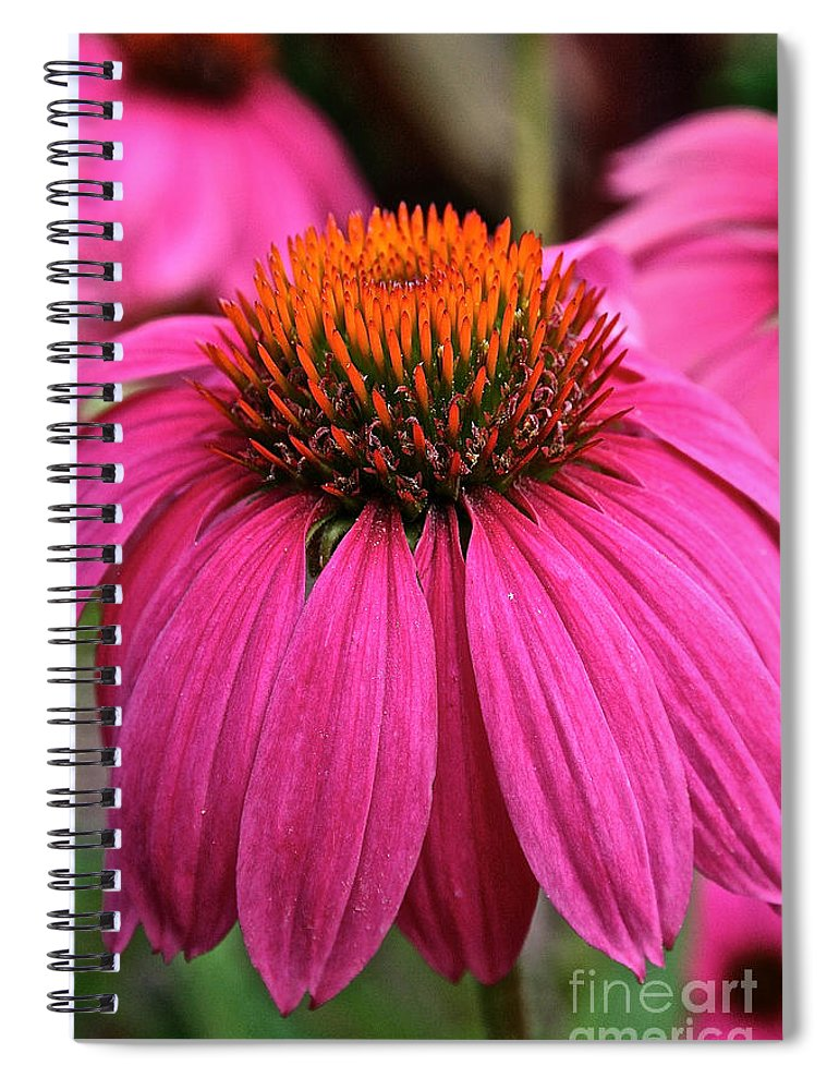 Plant Spiral Notebook featuring the photograph Wild Berry Purple Cone Flower by Susan Herber