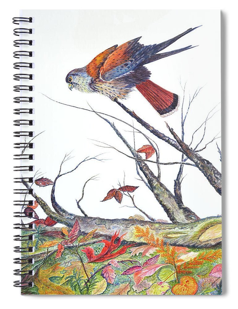Bird Spiral Notebook featuring the painting American Kestrel by Ben Kiger