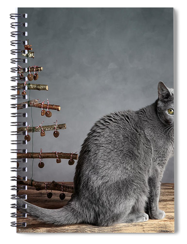 Cat Spiral Notebook featuring the photograph Cat Christmas by Nailia Schwarz