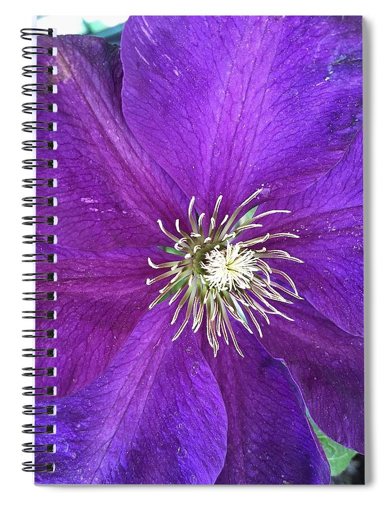 Clarity Spiral Notebook featuring the photograph Clarity by Shannon Grissom