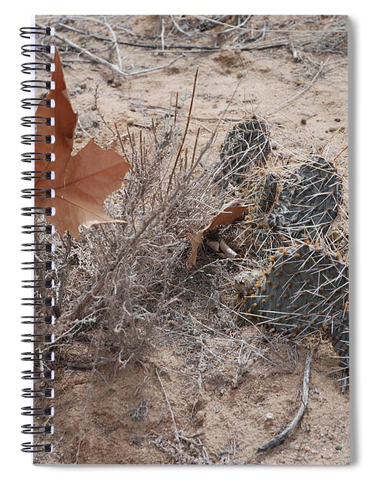 Desert Spiral Notebook featuring the photograph East Meets West by Rob Hans