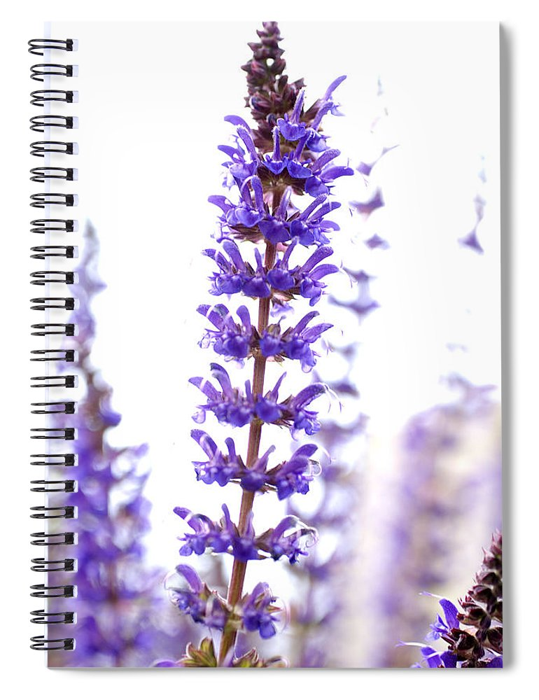 Flower Spiral Notebook featuring the photograph Flower by Jessica Wakefield