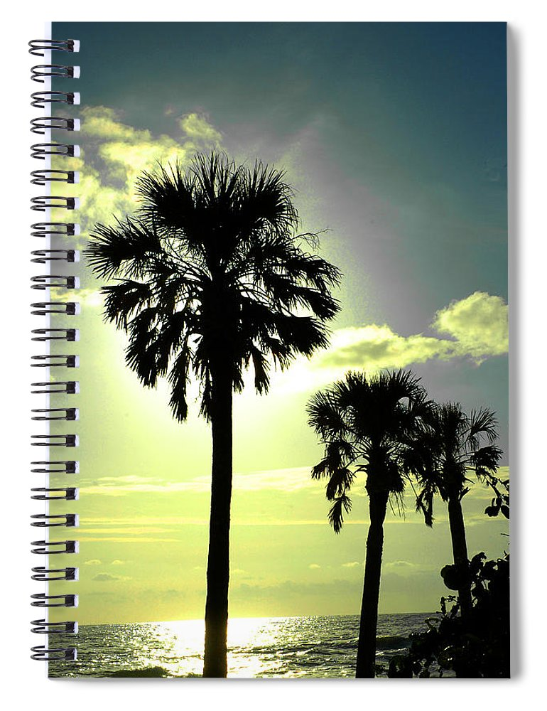 Photography Spiral Notebook featuring the photograph Honeymoon Island Sunset by Susanne Van Hulst