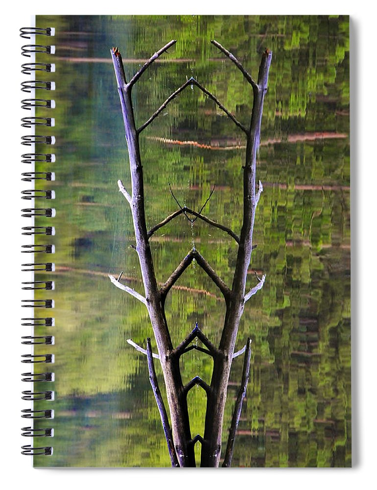 Photography Spiral Notebook featuring the photograph Jacob's Ladder by Skip Hunt