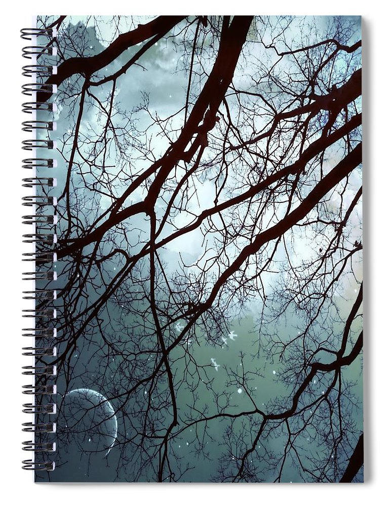 Night Sky Spiral Notebook featuring the photograph Night Sky In The Woods by Marianna Mills