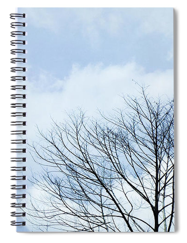 Winter Fall White Sky Spiral Notebook featuring the photograph Winter Tree by Adelista J