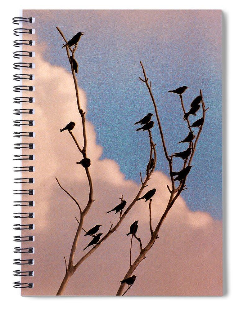 Birds Spiral Notebook featuring the photograph 19 Blackbirds by Steve Karol