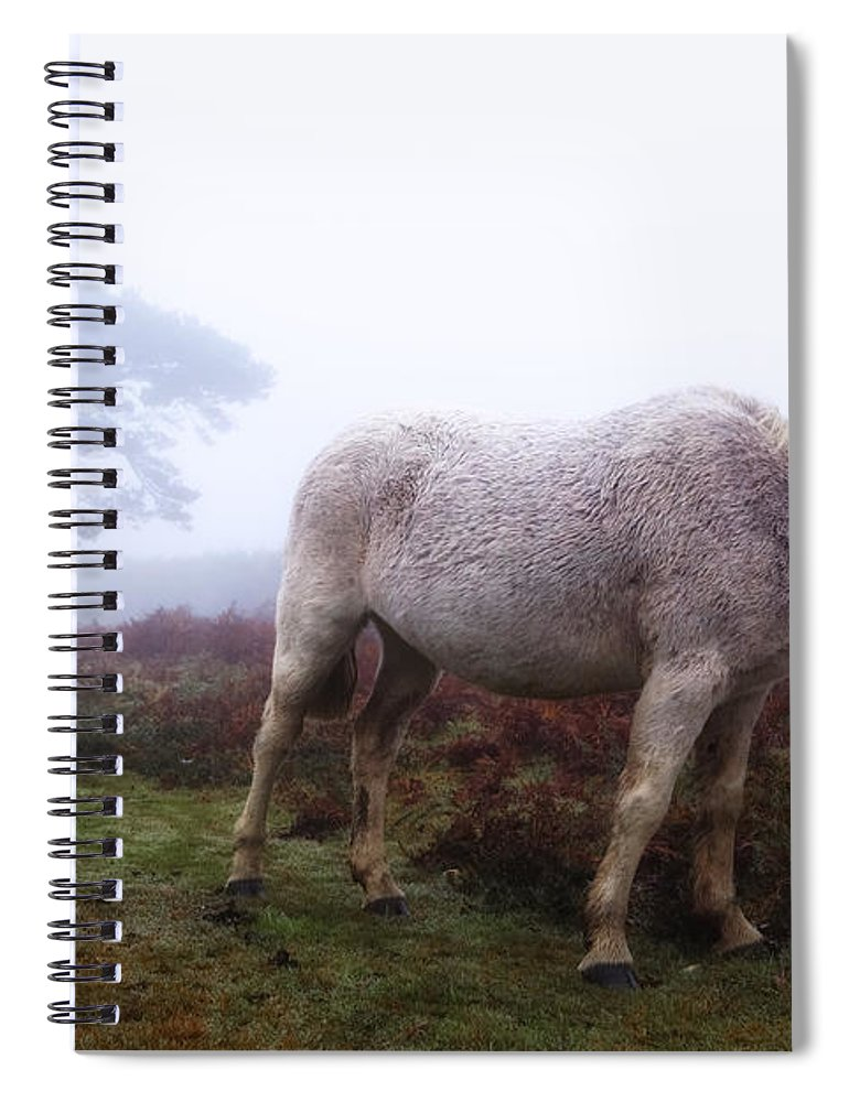 New Forest Spiral Notebook featuring the photograph New Forest - England by Joana Kruse