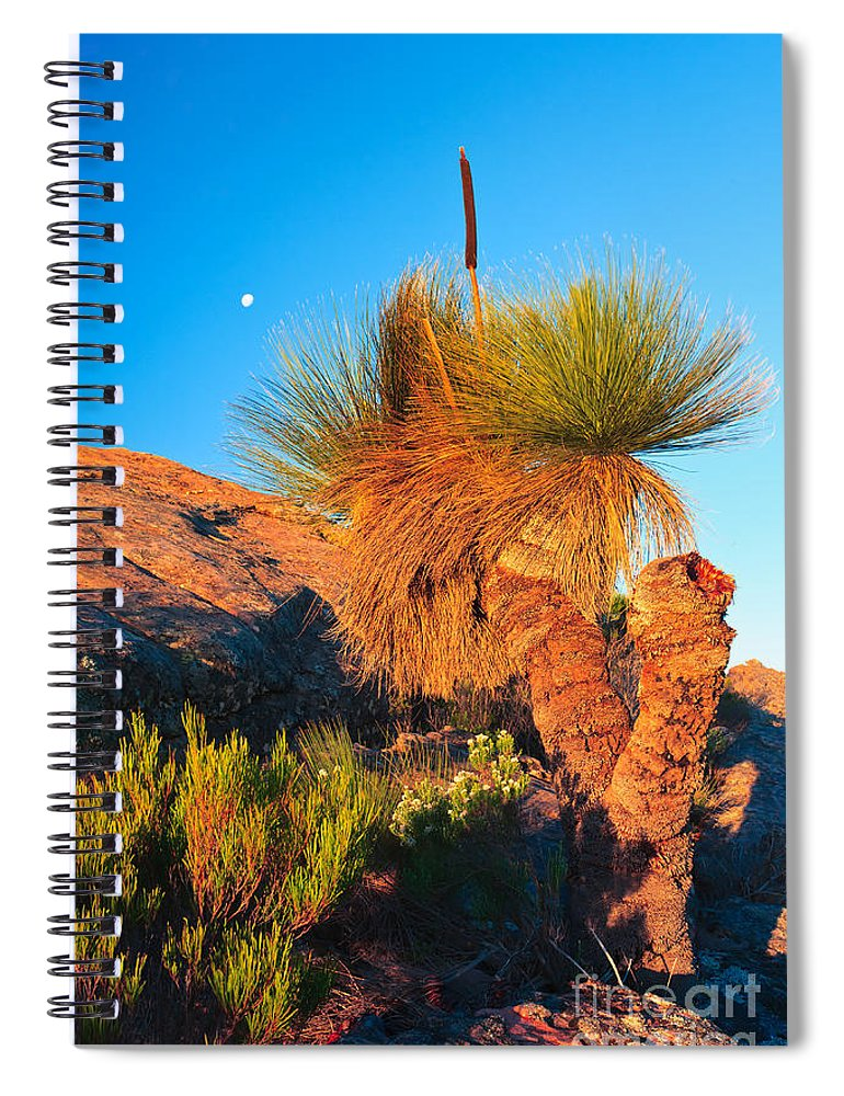 Wilpena Pound St Mary Peak Filinders Ranges South Australia Australain Landscape Landscapes Outback Moon Xanthorhoea Spiral Notebook featuring the photograph Wilpena Pound by Bill Robinson