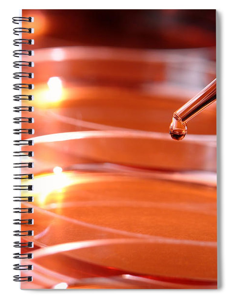 Petri Spiral Notebook featuring the photograph Laboratory Experiment In Science Research Lab by Olivier Le Queinec