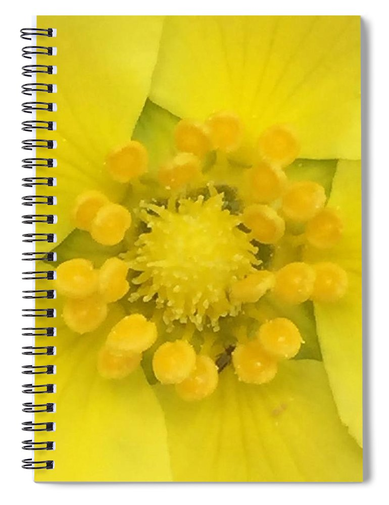 Flower Spiral Notebook featuring the photograph A Celebration of Yellow by Vonda Drees