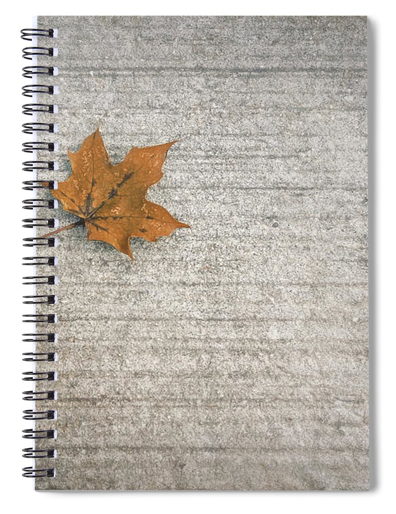 Leaf Spiral Notebook featuring the photograph A Hint of Autumn by Scott Norris