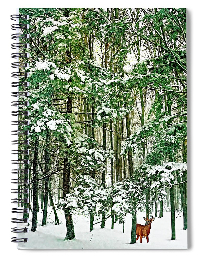 Deer Spiral Notebook featuring the photograph A Snowy Day by Steve Harrington