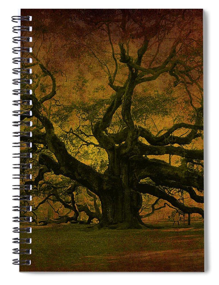 Angel Oak Spiral Notebook featuring the photograph Angel Oak 3 Charleston by Susanne Van Hulst