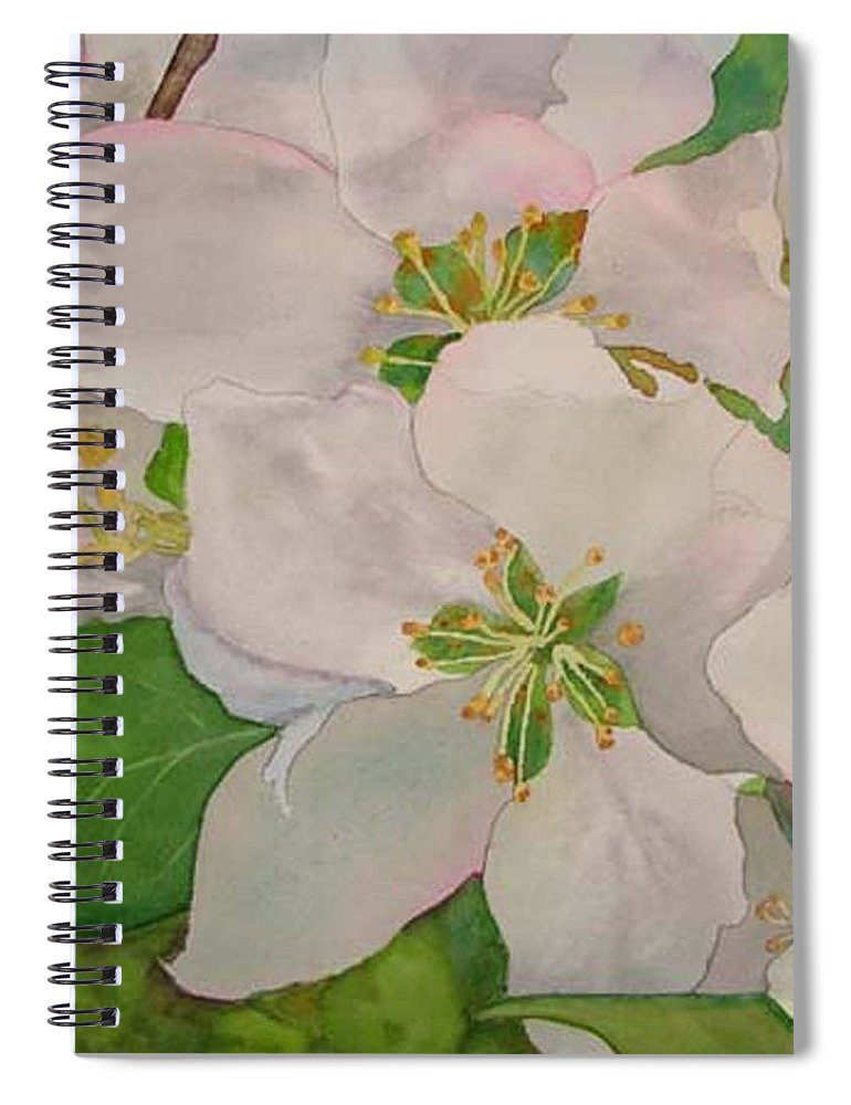Apple Blossoms Spiral Notebook featuring the painting Apple Blossoms by Sharon E Allen