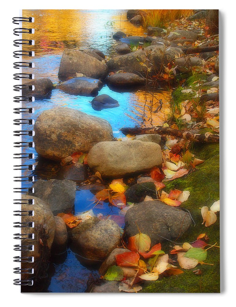 Autumn Spiral Notebook featuring the photograph Autumn By The Creek by Tara Turner