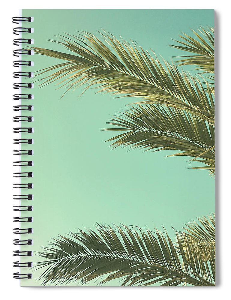 Palm Trees Spiral Notebook featuring the photograph Autumn Palms II by Cassia Beck