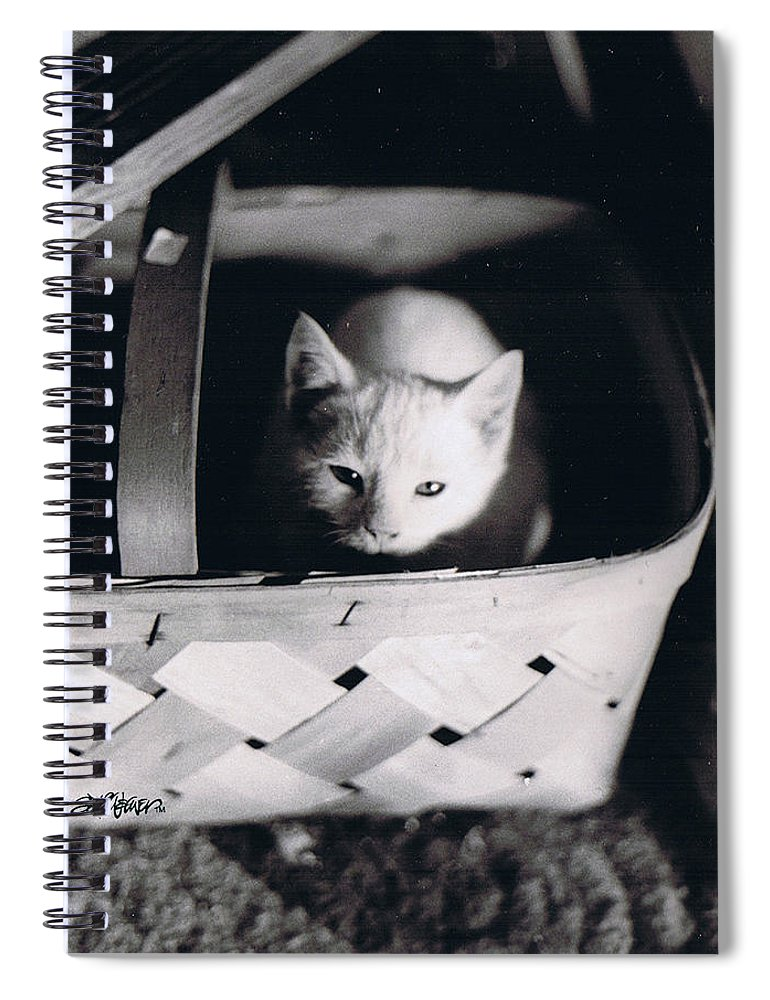 Cat Spiral Notebook featuring the photograph Basket Full of Charlemagne by Seth Weaver