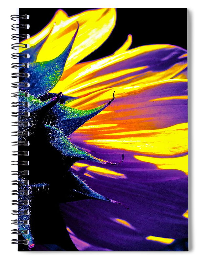Photograph Spiral Notebook featuring the photograph Believe In Him by Gwyn Newcombe