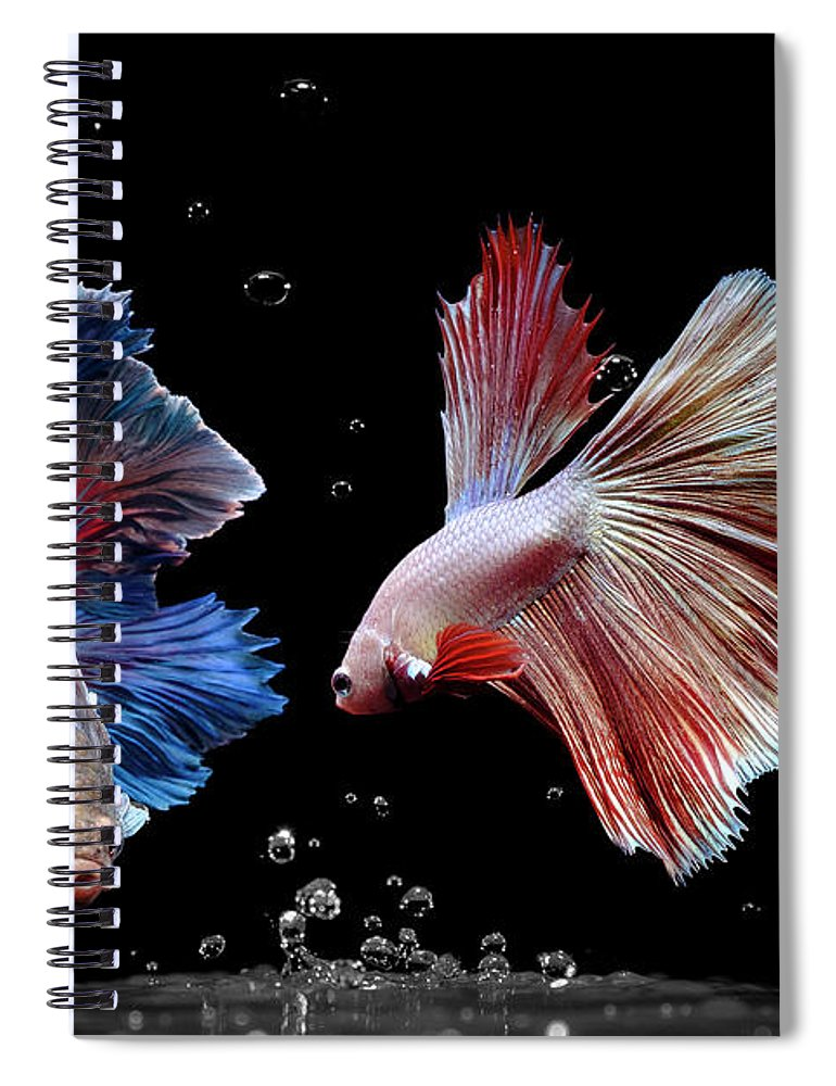 Animal Spiral Notebook featuring the photograph Betta1265 by Bang Yos