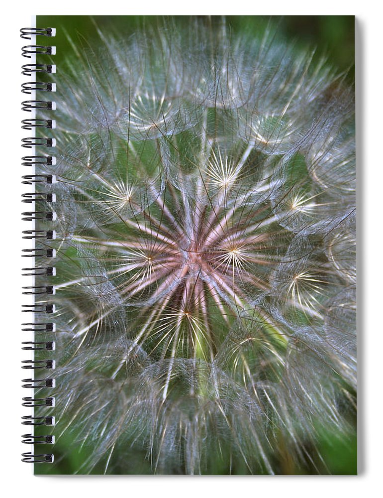 Dandelion Spiral Notebook featuring the photograph Big Wish by Linda Sannuti
