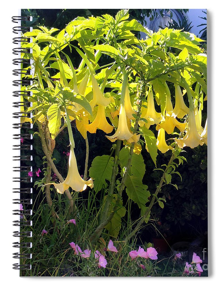 Big Yellow Bell Flowers Spiral Notebook For Sale By Sofia Metal Queen