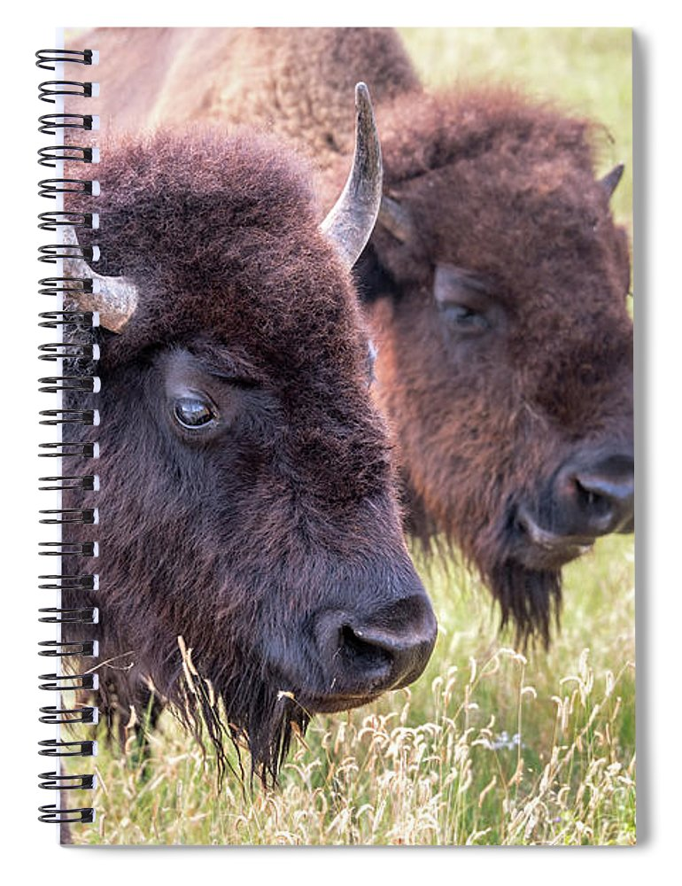 Bison Spiral Notebook featuring the photograph Bison Closeup View by Jess Kraft