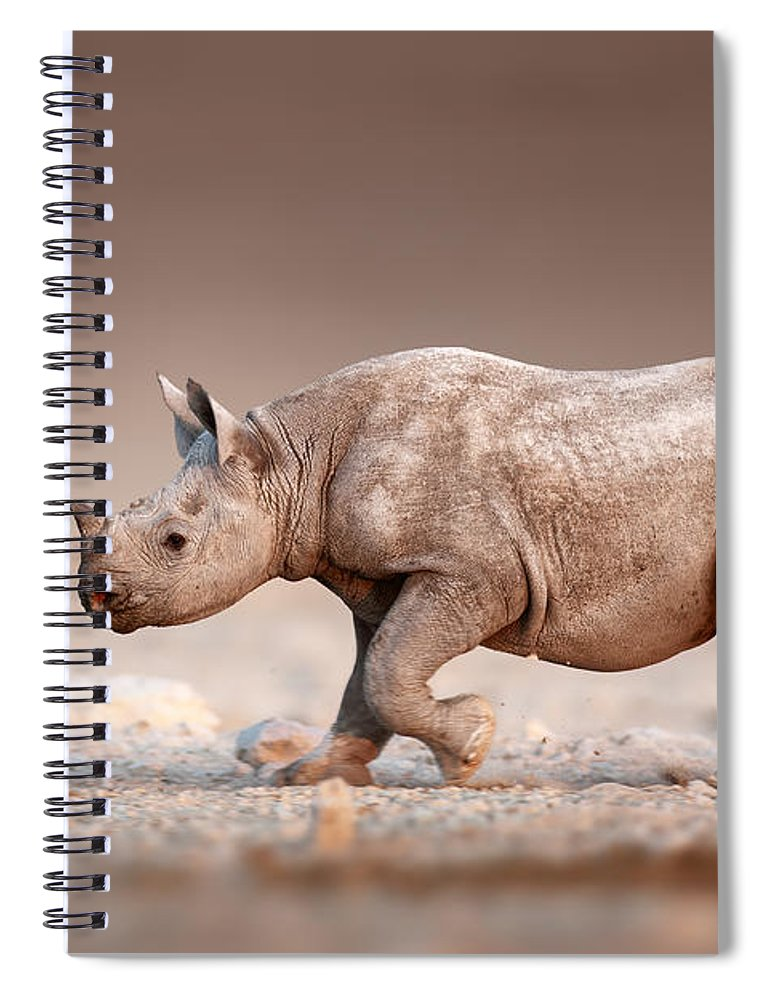 Rhinoceros Spiral Notebook featuring the photograph Black Rhinoceros Baby Running by Johan Swanepoel