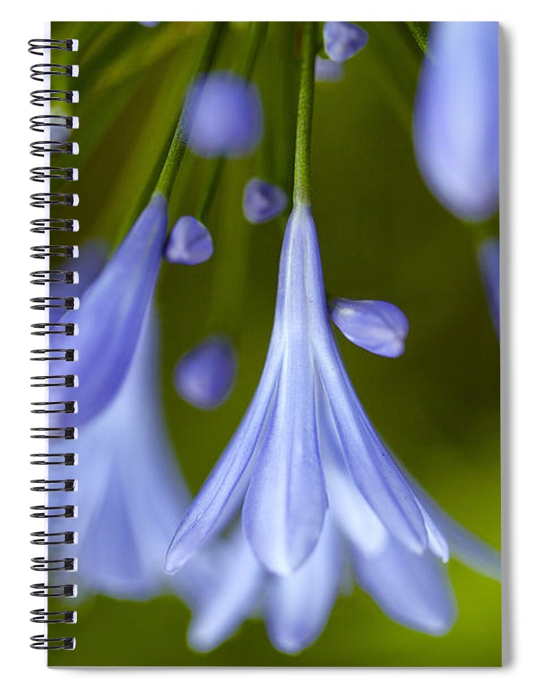 Flower Spiral Notebook featuring the photograph Blue Flowers by Nailia Schwarz
