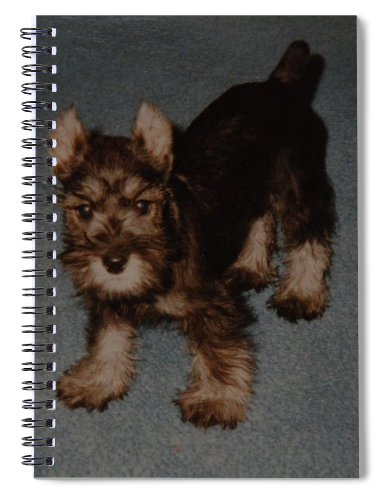 Dog Spiral Notebook featuring the photograph Boo Boo by Rob Hans