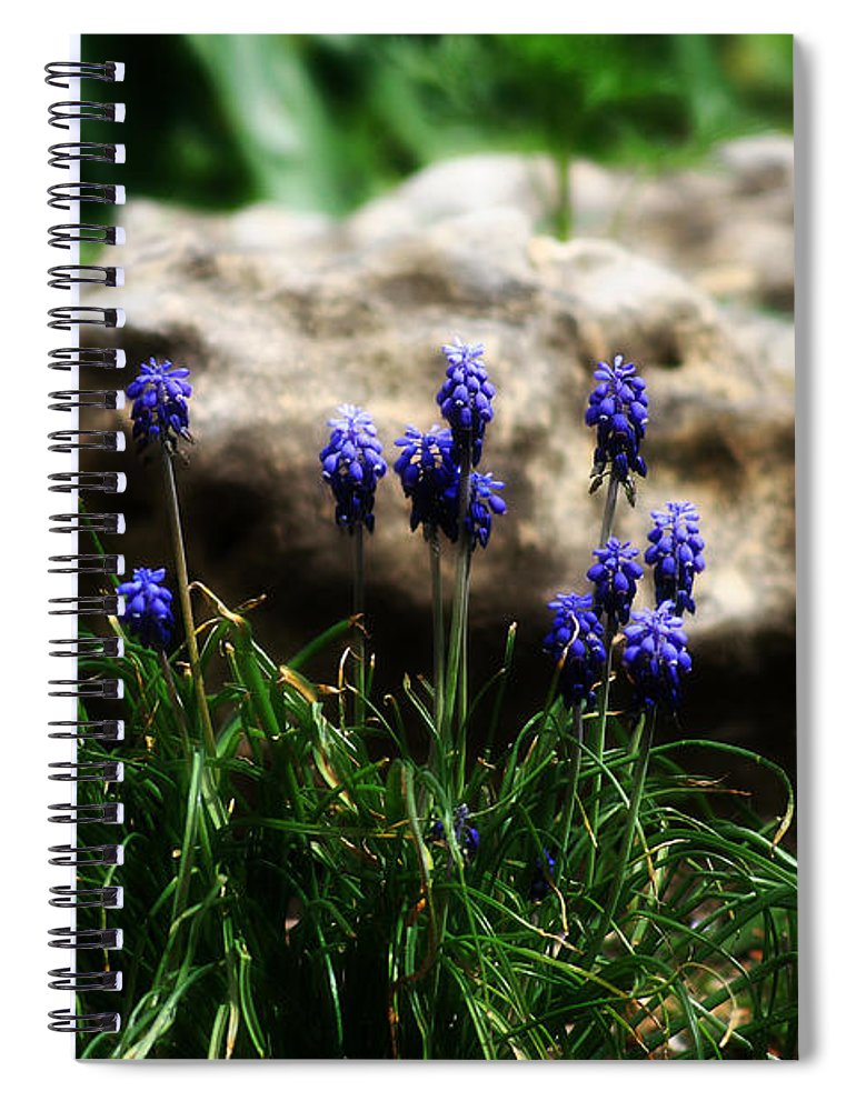 Flowers Spiral Notebook featuring the photograph Bring on the purple by Toni Hopper