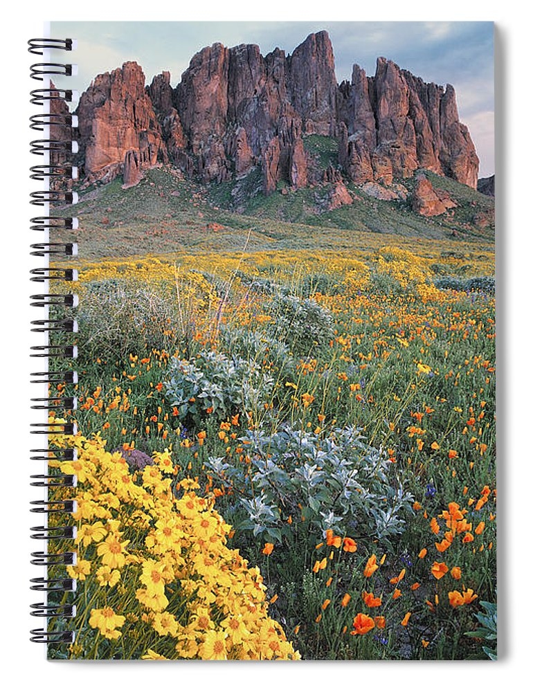 00175967 Spiral Notebook featuring the photograph California Brittlebush Lost Dutchman by Tim Fitzharris