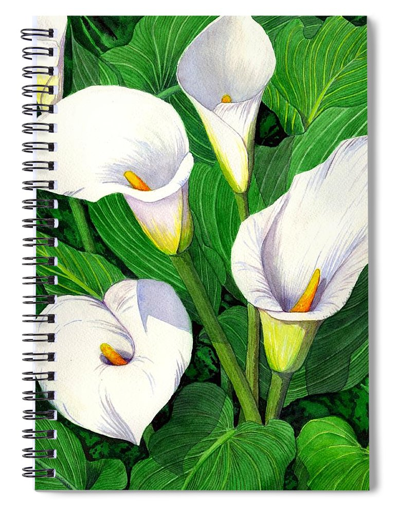 Lily Spiral Notebook featuring the painting Calla Lilies by Catherine G McElroy