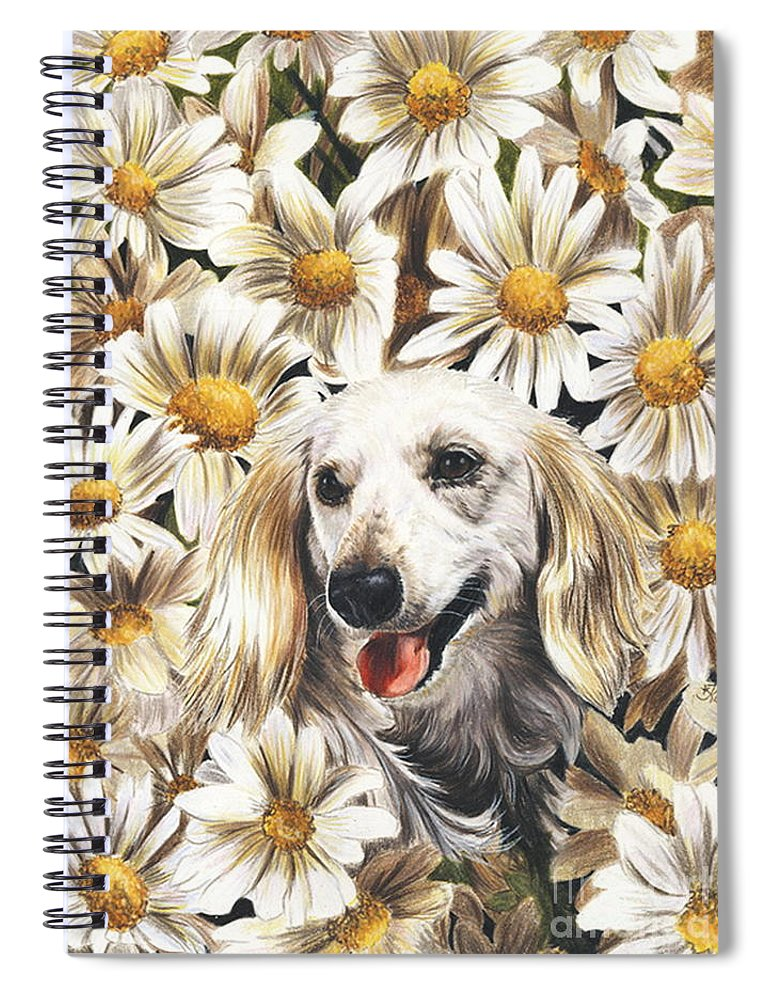 Dachshund Spiral Notebook featuring the drawing Camoflaged by Barbara Keith