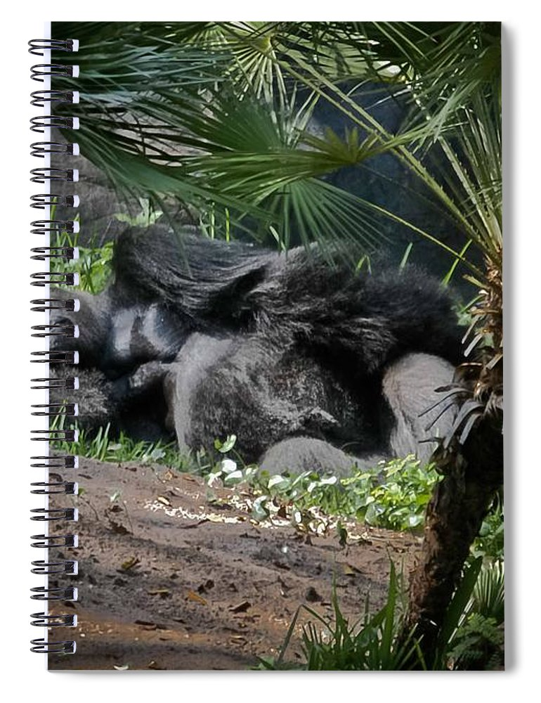 Gorilla Spiral Notebook featuring the digital art Captivity Is Heartbreaking by DigiArt Diaries by Vicky B Fuller